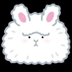 worried rabbit